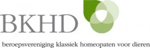 Logo bkhd